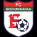 Bobruichanka